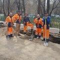 ИП Семяшкина, Корчевание дерева в Пушкинском районе