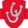 ИП Игнаткина О.А., Изготовление кованых заборов в Дубровском районе