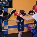 Занятия боксом с тренером: в группе – 3 варианта