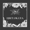 ЦВЕТ.ОК.UFA, Организация мероприятий в Дмитриевке