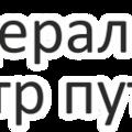 Федеральный центр путешествий, Страховые услуги в Городском округе Вологда