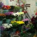 MЕRCі, Доставка цветов в Зилаирском районе